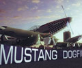 Play Mustang Dogfight
